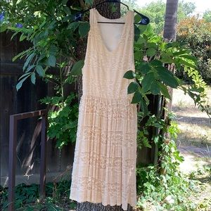 Painted Threads Lace Dress